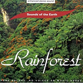 rainforest_cd