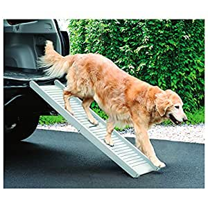 Etna Folding Dog Ramp