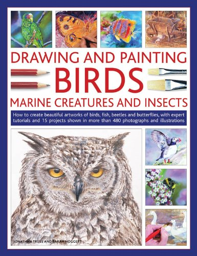 Drawing And Painting Birds, Marine Creatures and Insects: How to create beautiful artworks of birds, fish, beetles and butterflies, with expert. and illustrations (Drawing & Painting)