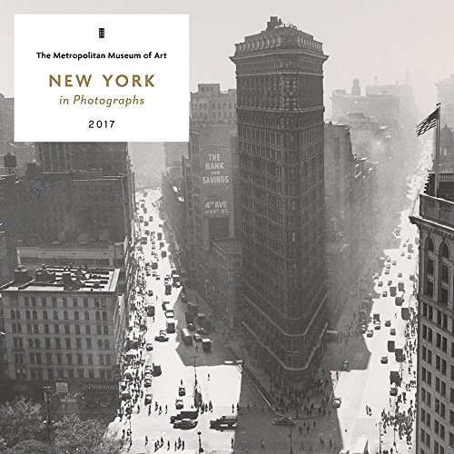 New York in Photographs 2017 Wall Calendar (New York City Photography compare prices)