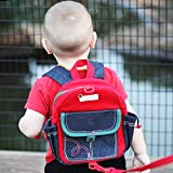 Child Safety Harness Backpack with Leash Never Lets Your Kids Get Away! Cute Toddler Bag for Pre-School! Keeps Essential Items Ready for Childcare! Great for Boys and Girls to Feel Like the Big Kid!