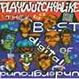 Best of Digital Underground Playwutchyalike