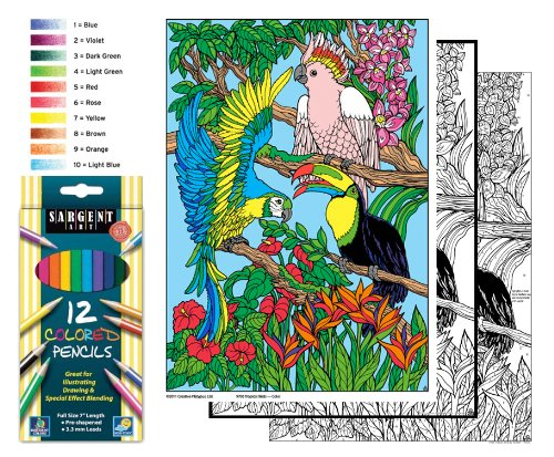 Tropical Birds - Color By Number Poster Set - Includes 12 Coloring Pencils - 1