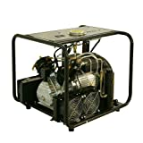 D Machinery Electric Air Compressor with Auto Stop Fuction,110v 60Hz,Up to 4500 psi High Pressure,Digital Display,Built-In Cooler Sytem for Paintball PCP Airgun Rifle Scuba Tanks Filling,LM60S (Color: Black)