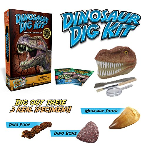 Dinosaur Dig Science Kit - Dig Up and Collect 3 Real Dinosaur Fossils!