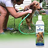 Dog Shampoo: and Conditioner All In One- Cleans, Conditions, Deodorizes, Detangles & Moisturizes; Best Dog Shampoo: Provides Itch Relief & Allergy Relief: Veterinary Grade Strength