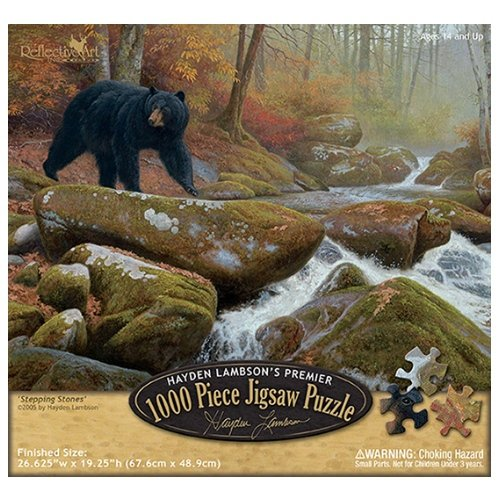 Reflective Art Stepping Stones Jigsaw Puzzle, 1000-Piece