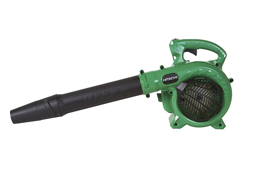 Hitachi RB24EAP Leaf Blower Review