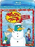 フィニアスとファーブ/メリー・ペリー・クリスマス ブルーレイ+DVDセット (期間限定) [Blu-ray]