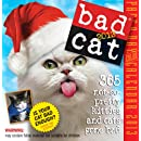 Bad Cat 2013 Page-A-Day Calendar