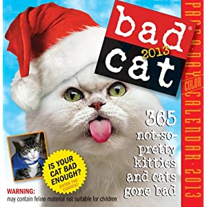 bad cat page a day calendar