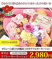 【母の日に間に合う】ボリューム感◎!20輪以上のカラフルカーネーション 華やか スプレーカーネーション 母の日 アレンジメント 花束 生花 記念 贈り物 プレゼント