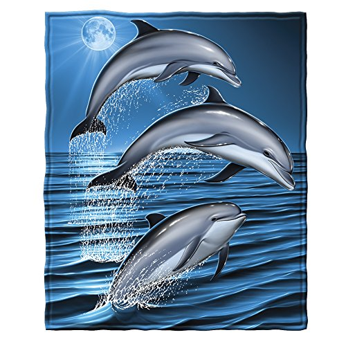 Dolphins Gifts