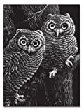 "Melissa & Doug Scratchboard, 11"" x 14"", Black Coated, 12-Board"