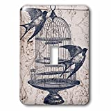 3dRose lsp_110264_1 Vintage Birds with Bird Cage Steampunk Art Light Switch Cover