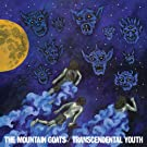 The Mountian Goats/ Transcendental Youth