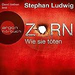 Zorn: Wie sie töten | Stephan Ludwig