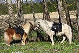 Mini minishetty Minishetty 8 Zoll Sattel auch Holzpferd Ponysattel Minipferd
