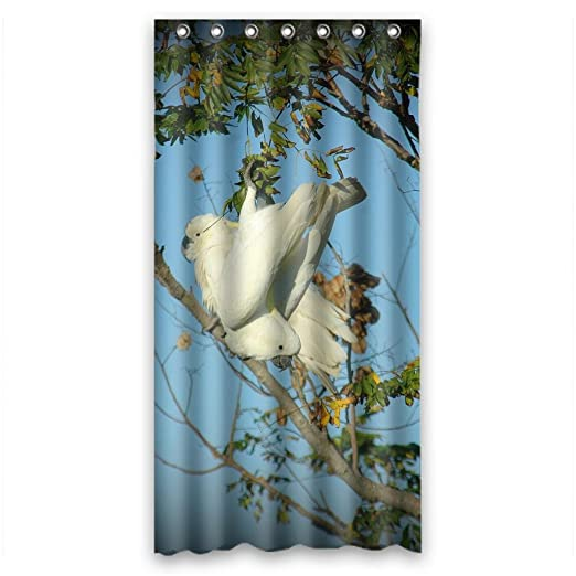 Flock of cockatoo spring scenery Shower Curtain Measure 36