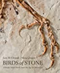 Birds of Stone: Chinese Avian Fossils...