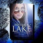 November Lake: Teenage Detective: The November Lake Mysteries, Book 1 | Jamie Drew