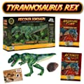 T-Rex Action Figure - Includes Real Dinosaur Bone Fossil!