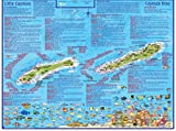 img - for Cayman Islands Travel and Dive Guide Electronic Franko Maps Fish ID Card and Map book / textbook / text book