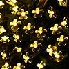 Lighting EVER LEDストリングライト, ソーラー充電式, 環境の光センサー, 電球色, フェアリーライト,  7メートルLED50個付き, 防水IP55, 庭、クリスマス、パーティー、結婚式の場合に効果を発揮!