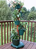 5 Planter Vertical Gardening System With Drip Irrigation System Finish: Hunter Green