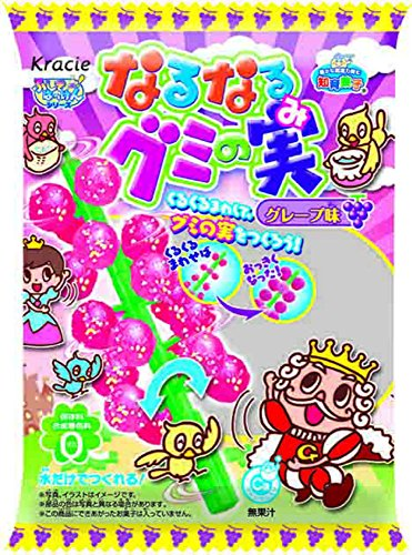 Kracie gummy trees making kit(grape) - Narunaruguminomi - 1