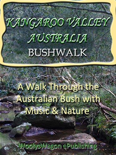 Kangaroo Valley Australia Bushwalk