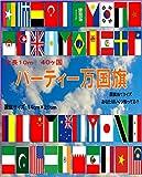 万国旗 40カ国連続国旗 全長10m 運動会やイベント、パーティに!(布製)