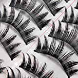 10 Pair Makeup Cosmetic Manual Natural Black Thick Long False Eye Lash Eyelashes