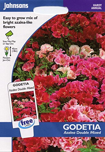johnsons seeds - Pictorial Pack - Fiore - Godetia Azalea Double Mix - 750 Semi
