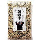 雑穀米 [ 黒米 赤米 緑米 発芽玄米 ひえ きび あわ 押麦 ] 熊本産 完全無添加200g
