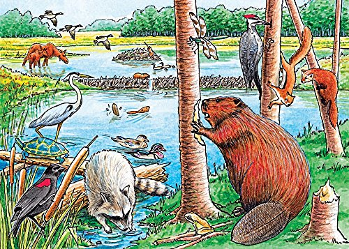 Cobble Hill The Beaver Pond Jigsaw Puzzle, 35-Piece
