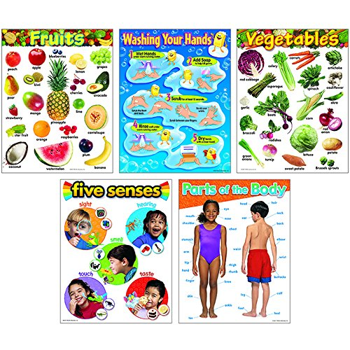 Trend Enterprises Healthy Living Learning Charts Combo Pack (T-38980) (Vegetable Chart compare prices)