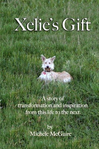 Xelie's Gift: A story of transformation and inspiration from this life to the next.