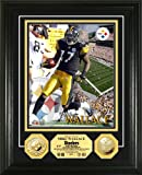 NFL Pittsburgh Steelers Mike Wallace 24KT Gold Coin Photo Mint