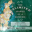 The Unlimited Sparks of a Bonfire, Chapter 4: Japan: Healing Anger and Pain with Forgiveness and Peace Audiobook by Molly McCord Narrated by Steve White