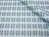 ナスカ リレ・スキップ キャンバス 生地 綿80% 麻20% 約110cm巾×1mカット col.2C CF10004-2