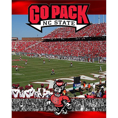 Cheap R & R Imports Racing Reflections Nc State Wolfpack 550 Piece Puzzle Set 18 X 24 (B0046HLPES)
