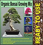 BONSAI TREE SOIL - BONSAI TREES COMPOST with PERLITE (5 LTS) CAN BE USED INDOOR FOR POTS & REPOTTING - READY TO USE