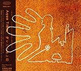 ダレカの地上絵 / Aqua Timez (その他); Aqua Timez (演奏); 太志 (その他) (CD - 2007)