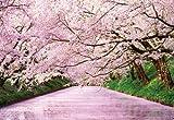 500コンパクトピース 弘前公園 桜の浮橋 35-004