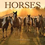 Horses 2016 Square 12x12 Wall Calendar