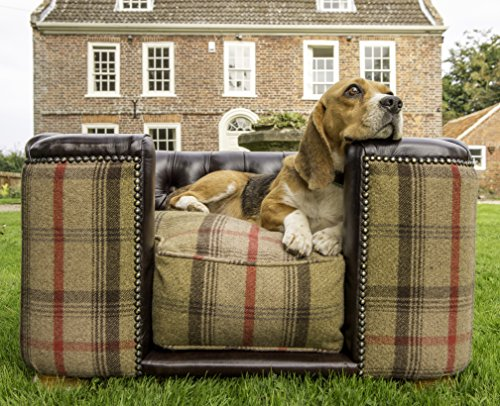 burghley-buttoned-square-chesterfield-dog-bed-mahogany-leather-and-hunter-tweed-medium