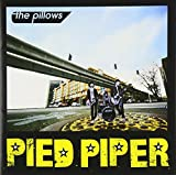 PIED PIPER (ALBUM DVD)