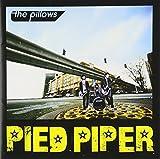 PIED PIPER (ALBUM DVD)