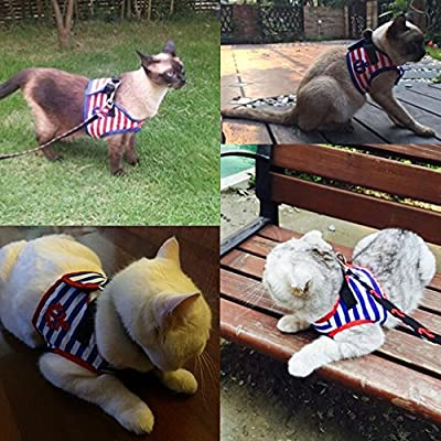 Bro'Bear Adorable Soft Velcro Cat/Dog Safety Walking Mesh Sailor Vest Harness + Matching Lead Leash Set(Can Be Pet & Kitty & Puppy Car Vehicle Seat Harness/Halloween Classics Collection Costume/Photo Apparel/Holiday Wear/Clothes Party Coat)